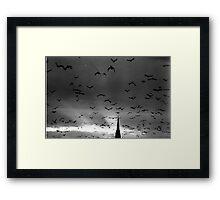 A murmuration of starlings Framed Print