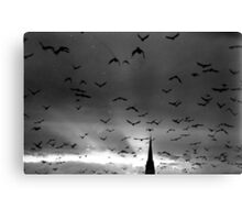 A murmuration of starlings Canvas Print