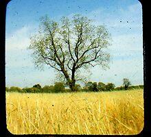 "Tree Of Knowledge by Carol ""Cookie"" Holmes"