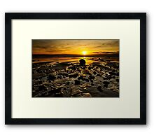 Beach Morning Glory Framed Print