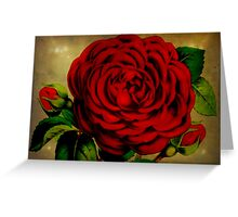 I Love You ~ Happy Valentine's Day Greeting Card