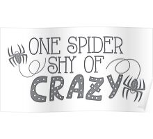 One spider shy of CRAZY Poster