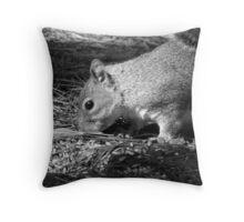 Grey Squirrel B&W Throw Pillow