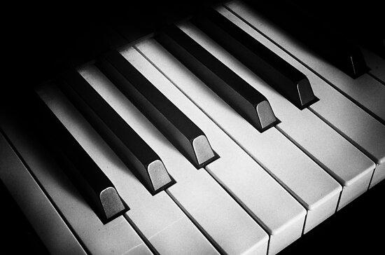 the keyboard by RodrigoVSQ