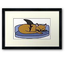 Catfish - Parody Framed Print