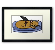 Catfish - Parody Framed Print