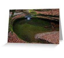 Above the Green Pool  Greeting Card