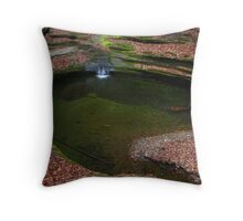 Above the Green Pool  Throw Pillow