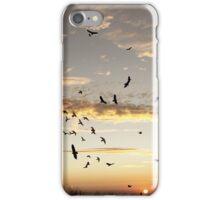Circling at Sunset iPhone Case/Skin