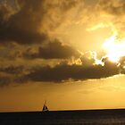 Sailing off into the sunset in Maui. by MissKat77
