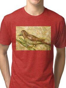 A bird the surprise visitor Tri-blend T-Shirt