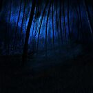 Moonlit Forest by Mitch Adams