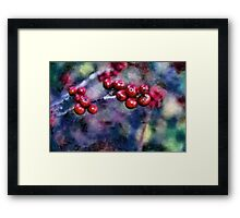 A Colorful Life Framed Print