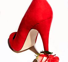 red roses shoe  by zoe5291