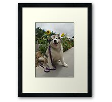 Happy Katie Framed Print