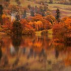 Autumn Rydal Water by Phiggys