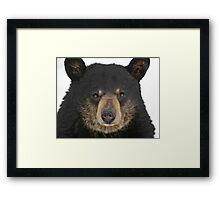 Bear and Grin it Framed Print
