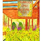 Rudbeckia Little Goldstar by Sally Griffin