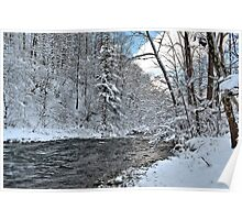 """ Winter Adventure - Camillus, NY "" Poster"