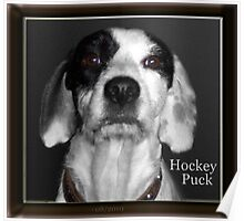 Hocky Puck Poster