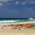 The Beach by SandycPhotos
