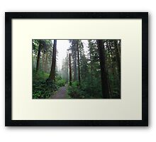 Enchanting Forest Framed Print