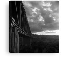 Bridge and Bird Canvas Print