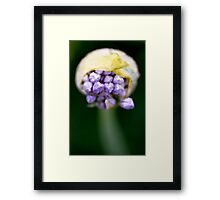 Different Angle  Framed Print