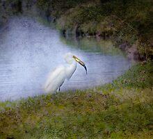 Egret by TraceyTilsonArt