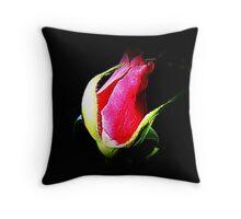 Bud of  Peter Frankenfeld Rose Throw Pillow