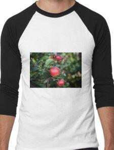 Scrummy Scrumptious Apples Men's Baseball ¾ T-Shirt