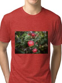 Scrummy Scrumptious Apples Tri-blend T-Shirt