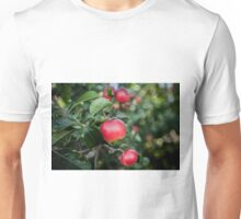 Scrummy Scrumptious Apples Unisex T-Shirt