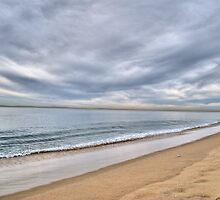 Newport Beach Landscape by Diego Re