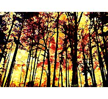 Fire on the mountain Photographic Print