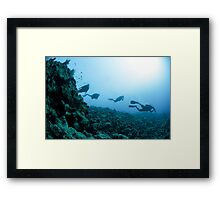 Scuba divers in the water  Framed Print
