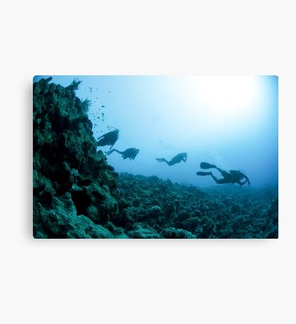 Scuba divers in the water  Canvas Print
