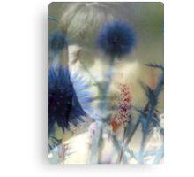 Katherine Mansfield Canvas Print