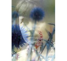 Katherine Mansfield Photographic Print