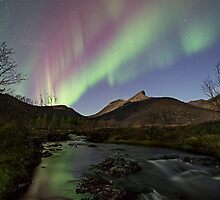 The river I by Frank Olsen