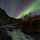 The river II by Frank Olsen