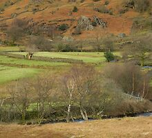 GRASMERE HILLS by andysax