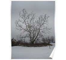 Inland in the Snow Poster