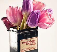 Tulips in vintage medicin box by Henrietta Hassinen