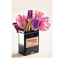 Tulips in vintage medicin box Photographic Print