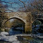 Dartmoor River Dart Holne New Bridge Winter Scene by richard wolfe