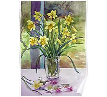 Daffodils in a jug Poster