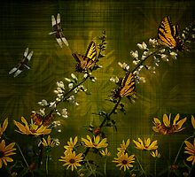 In The Garden by swaby