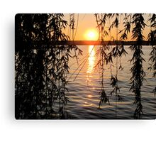 Willow sunset Canvas Print