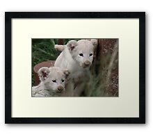 If Only We Could... Framed Print